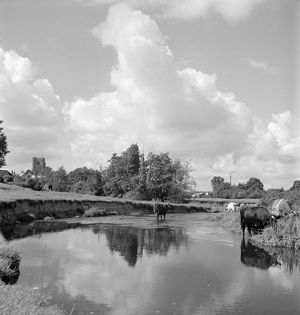 Rural river scene AA079535