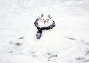 Snow Cat DP087403