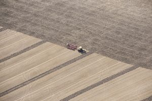 Stubble cultivation 28332_026