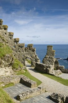 Tintagel Castle (Selection of 34 Items)