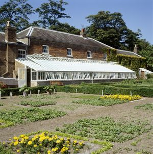 Walmer Castle kitchen garden K021489