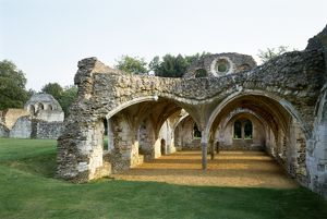 Waverley Abbey K930409