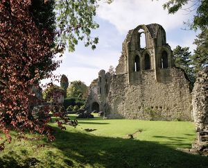 Wenlock Priory N040043