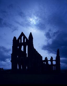 Whitby Abbey J850257