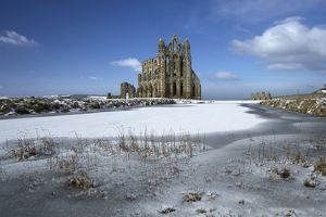 Whitby Abbey N100027