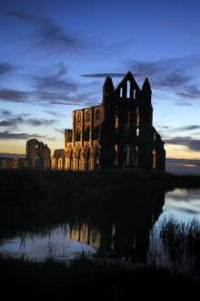 Whitby Abbey at sunset N080808