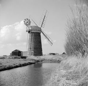 Windmill, Norfolk AA98_15877