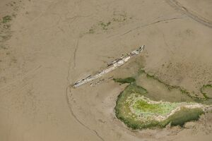 Wrecks at Stoke Saltings 29652_042